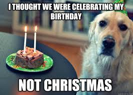 December Birthday Meme - adifferentforest net december birthdays