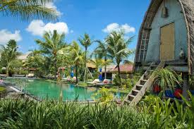 where to eat green drink and practice yoga in bali