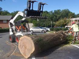 our equipment arbormax tree service