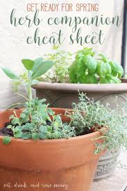 Ready For Spring by Getting Ready For Spring With An Herb Garden Eat Drink And