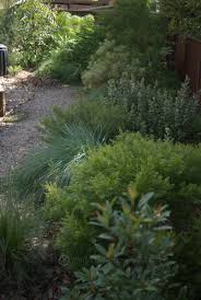 Australian Garden Ideas by Tapestry Gardens Mallee Design