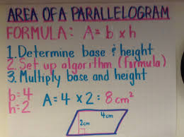 area notes and practice worksheet triangles key and squares
