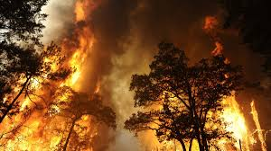Wildfire History by Texas Bastrop Fire Photos Videos Of Blaze