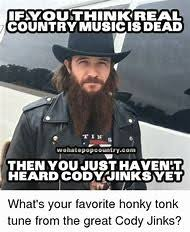Country Music Memes - best 25 ideas about music memes find what you ll love