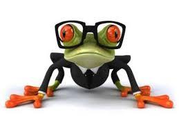 25 unique happy birthday frog ideas on pinterest happy 11th