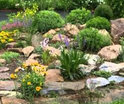 perfect check planting positions make a shady rock garden to