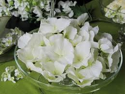 fleurs blanches mariage decoration mariage brassez des fleurs immaculées décorer le