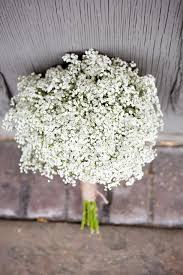 baby s breath bouquet baby s breath centerpieces and bouquets
