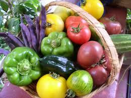 growing food u2022 the urban homestead