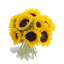 sunflower delivery simply sunflowers bouquet flowermart florist fresh sunflower
