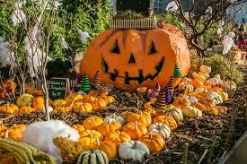 Oklahoma City Botanical Garden by 7 Old Fashioned Fall Experiences Metrofamily Magazine October