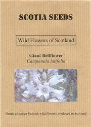wildflower seed packets scotia seeds wildflowers of scotland