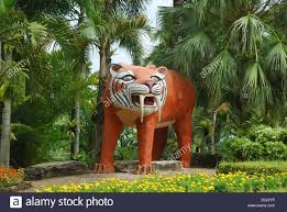 Nong Nooch Tropical Botanical Garden by Nong Nooch Pattaya Stock Photos U0026 Nong Nooch Pattaya Stock Images