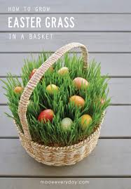 easter basket grass easter grass in a basket made everyday