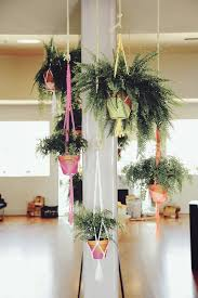 Hanging Plant Holders In Spaces Melbourne With Tall Planter Pot - Kitchen sink melbourne