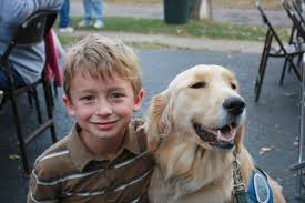 Comfort Retrievers America U0027s Best Friend Sandy Hook Comfort Dogs Take The Lead In