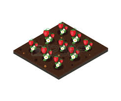 Strawberry Bed 76 Strawberry Bed Stock Illustrations Cliparts And Royalty Free