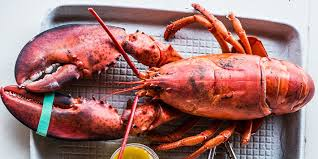 i m lobster for thanksgiving because turkey kinda blows