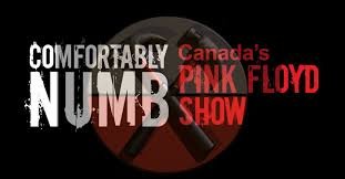 Comfortably Numb Cover Band Comfortably Numb Canada U0027s Pink Floyd Show Home Facebook