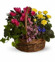fort myers florist blooming garden basket in fort myers fl the master s touch florist