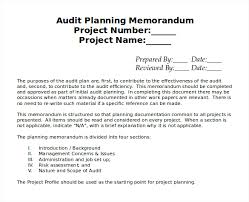 audit format sample audit program figure 2 evaluating access