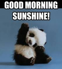 Have A Great Day Meme - 23 best good morning images on pinterest bonjour buen dia and