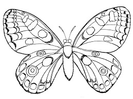 butterfly coloring pages for kids to print u2014 fitfru style