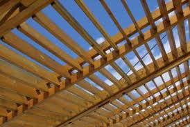 Roof For Patio Vines For Patio Roofs Home Guides Sf Gate