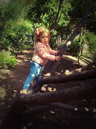 Princess Of England Queens Of England The Princess Of The Forest