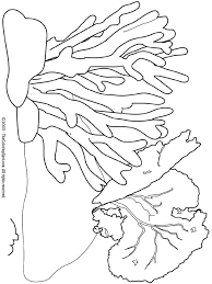 light up your brain coral audio stories for kids free coloring pages from light up