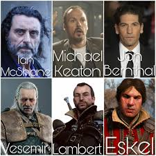 my definitive witcher netflix series fancast total of 24 witcher