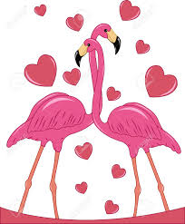 two enamoured pink flamingos with hearts on a white background