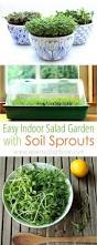 1849 best gardening images on pinterest garden ideas indoor