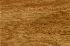 Rubber Plank Flooring Awesome Rubber Plank Flooring Rubber Plank Flooring Traditional