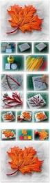Maple Leaf Square Floor Plans by Best 25 Maple Leaf Homes Ideas On Pinterest Paper Quilling