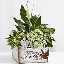condolence gift sympathy gifts condolence gifts gift ideas gifts