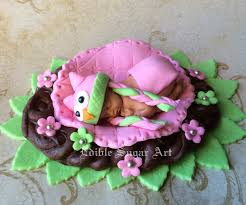 Owl Decorations by Owl Baby Shower Cake Topper Fondant Owl Knitted Hat First