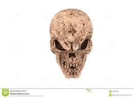scary halloween white background scary spooky skull white background stock photo image 60596157
