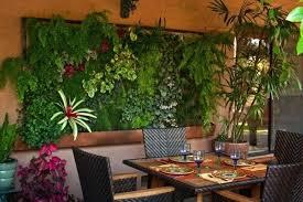 indoor succulent garden hanging indoor vertical vegetable garden