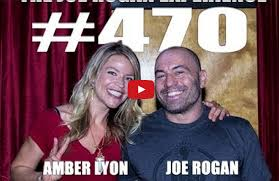 bureau d ude structure lyon joe rogan and lyon discuss healing power of psychedelics and