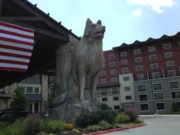 Grapevine Map The Top 10 Things To Do Near Great Wolf Lodge Grapevine Tripadvisor