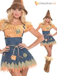 diy wizard costume mens ladies scarecrow costume book week day character fancy dress