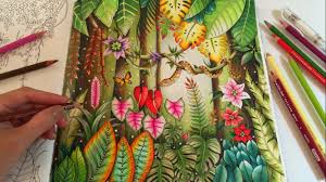 magical jungle coloring book johanna basford coloring