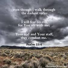 Scriptures Of Comfort And Peace Top 7 Bible Verses To Calm Fear