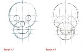 how to draw a skull drawing lessons