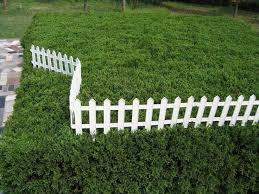 best 25 plastic garden fencing ideas on pinterest chicken fence