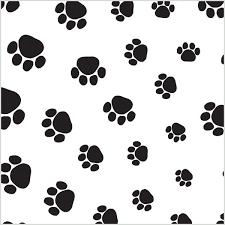 paw print tissue paper theme design tissue box and wrap