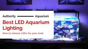 best lighting for corals best led aquarium lighting an expert 2018 guide authority aquarium