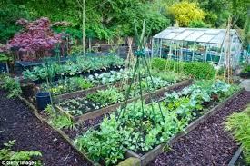 Fall Vegetable Garden Ideas Garden Plot Ideas Edible Cutting Garden Garden Design Ca Vegetable
