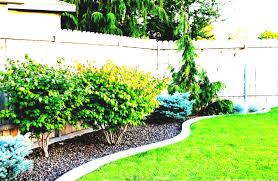 backyard landscaping ideas small budget design pool back yard